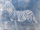 Zebra (-)