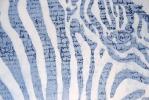 Zebra (+) (detail)
