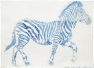 Zebra (+)